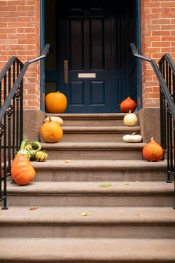 Colin Hutton PUMPKINS ON STEPS OUTSIDE DOOR Houses