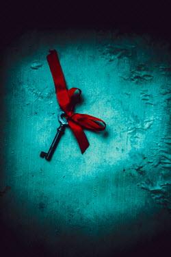 Ildiko Neer Old key with red ribbon