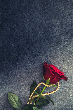 Des Panteva RED ROSE WITH PEARLS Flowers