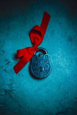 Ildiko Neer Ornate padlock with red ribbon