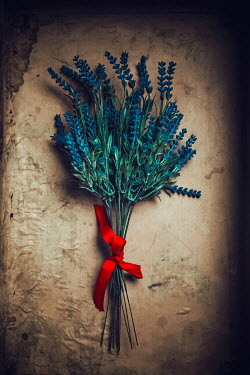 Ildiko Neer lavender bouquet with red ribbon Flowers