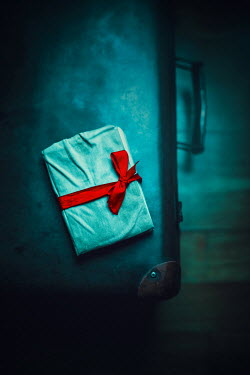 Ildiko Neer Small notebook on briefcase with red ribbon