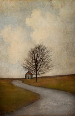 Jamie Heiden BARN BY COUNTRY ROAD IN WINTER Miscellaneous Buildings