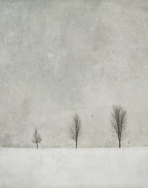 Jamie Heiden TREES IN SNOWY LANDSCAPE Snow/ Ice