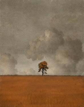 Jamie Heiden TREE IN FIELD IN AUTUMN Fields