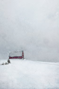 Jamie Heiden BARN IN SNOWY LANDSCAPE Miscellaneous Buildings