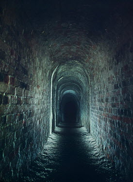 Mark Owen LONG BRICK TUNNEL IN SHADOW Streets/Alleys