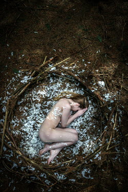 Stephen Carroll NAKED GIRL LYING IN NEST WITH FEATHERS Women
