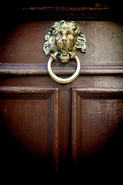 Miguel Sobreira GOLD LION HANDLE ON WOODEN DOOR Building Detail