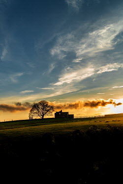 Stephen Mulcahey A silhouette of a isolated farmhouse at sunset Houses