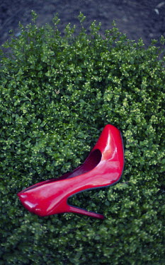 Nilufer Barin RED STILETTO ON BUSH Miscellaneous Objects
