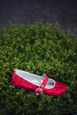 Nilufer Barin GIRL'S RED SHOE ON HEDGE Miscellaneous Objects
