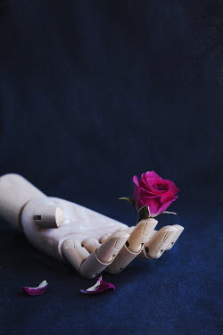 Isabelle Lafrance WOODEN HAND OF MANNEQUIN HOLDING ROSE Flowers
