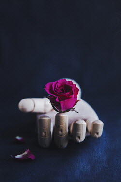 Isabelle Lafrance HAND OF MANNEQUIN WITH ROSE Flowers