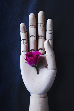 Isabelle Lafrance HAND OF MANNEQUIN HOLDING ROSE Miscellaneous Objects