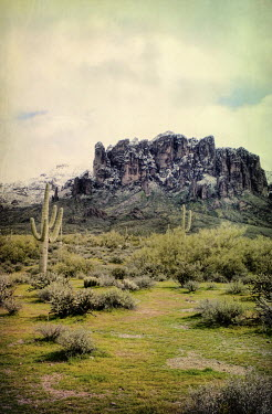 Jill Battaglia LANDSCAPE WITH CACTUS AND SNOWY MOUNTAIN Rocks/Mountains