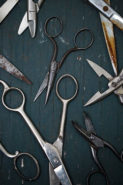 Alison Archinuk Many scissors on table Miscellaneous Objects