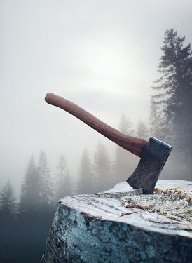 Mark Owen AXE ON BLOCK WITH FOGGY FOREST Miscellaneous Objects