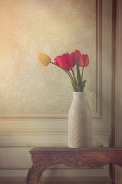 Drunaa TULIPS IN VASE Flowers