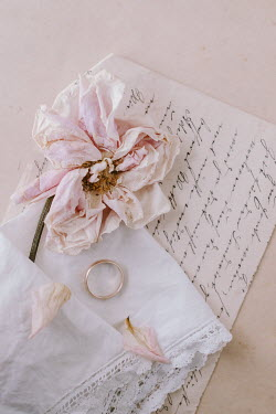 Magdalena Wasiczek WITHERED ROSE WITH LETTER AND WEDDING RING Flowers
