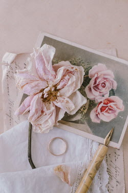 Magdalena Wasiczek WITHERED ROSE WITH PICTURE RING PEN AND LETTER Flowers