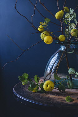 Magdalena Wasiczek BRANCHES WITH FRUIT IN JUG ON TABLE Flowers