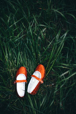 Nilufer Barin GIRL'S RED SHOES LYING IN GRASS Miscellaneous Objects