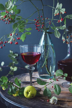 Magdalena Wasiczek DRINK FRUIT AND SNAIL ON TABLE Miscellaneous Objects