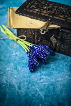 Des Panteva Purple flower and box of letters Flowers