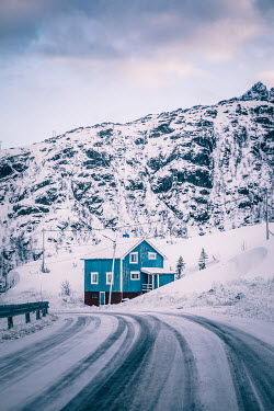 Des Panteva BLUE HOUSE ON SNOWY ROAD Houses
