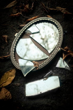 Jane Morley BROKEN SILVER MIRROR AND LEAVES Miscellaneous Objects