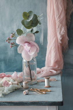 Magdalena Wasiczek PINK FLOWERS IN GLASS VASE Flowers