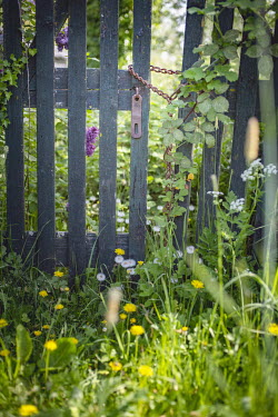 Ysbrand Cosijn LOCKED GATE WITH OVERGROWN GARDEN Gates