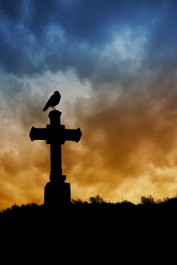 Valentino Sani SILHOUETTE OF BIRD ON CROSS Statuary/Gravestones