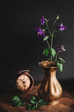 Magdalena Wasiczek WILTING FLOWERS IN VASE WITH OLD CLOCK Flowers