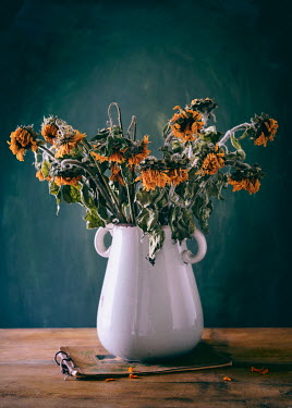Magdalena Wasiczek WITHERED SUNFLOWERS IN VASE ON NOTEBOOK Flowers
