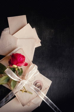 Jane Morley ROSE WITH RIBBON LETTERS AND ENVELOPES Flowers