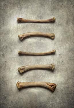 Jaroslaw Blaminsky Small bones on stone Miscellaneous Objects