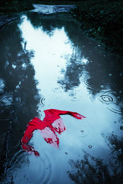 Magdalena Russocka Red jumper in rainy puddle Miscellaneous Objects