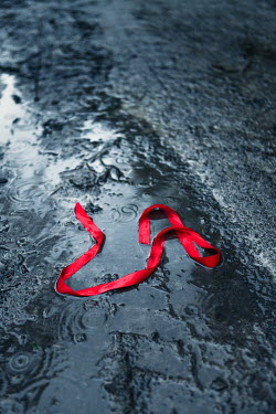 Magdalena Russocka red ribbon abandoned in puddle in rain Miscellaneous Objects