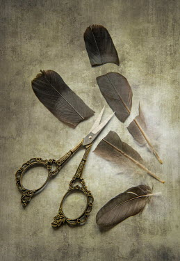 Jaroslaw Blaminsky Three cut feathers and scissors Miscellaneous Objects