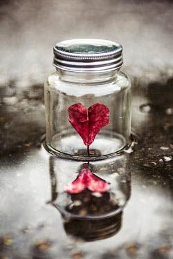 Kelly Sillaste RED PAPER HEART IN GLASS JAR Miscellaneous Objects