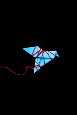 Miguel Sobreira Paper Bird Trapped in Red Thread Miscellaneous Objects