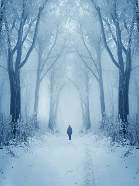 Andrei Cosma ONE PERSON STANDING IN SNOWY FOREST Trees/Forest