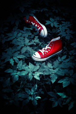 Magdalena Russocka pair of red sneakers abandoned in garden