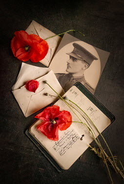 Jane Morley WARTIME DIARY AND PHOTOGRAPH WITH POPPIES Flowers
