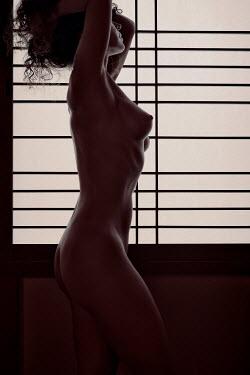 Alex Maxim Woman nude by window screen Women