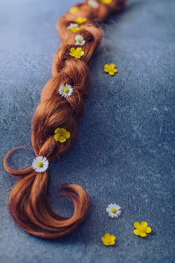 Des Panteva PIGTAIL COVERED WITH BUTTERCUPS AND DAISIES Miscellaneous Objects