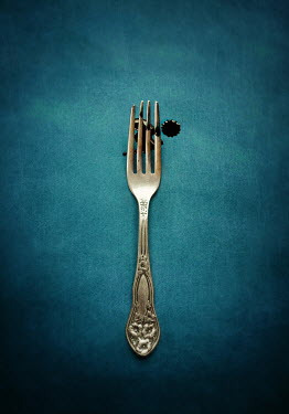 Lyn Randle metal fork and dark liquid Miscellaneous Objects