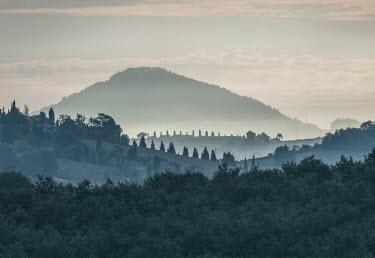 Jaroslaw Blaminsky MISTY HILL WITH TREES Rocks/Mountains